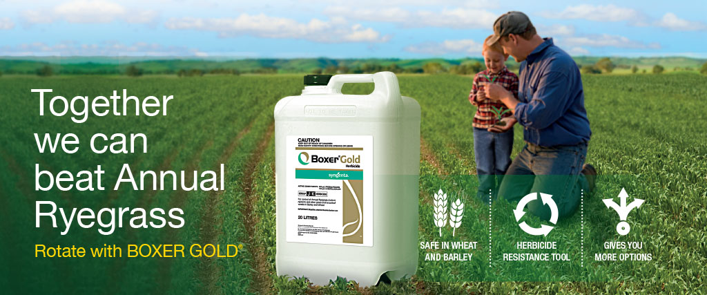 Syngenta rotate with Boxer Gold