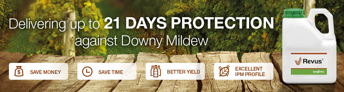 Revus delivering up to 21 days protection against Downy Mildew