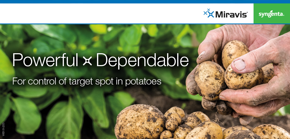 Miravis in Potatoes - Powerful Dependable