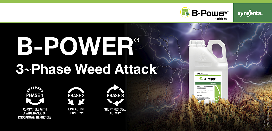 B-Power 3 Phase Weed Attack