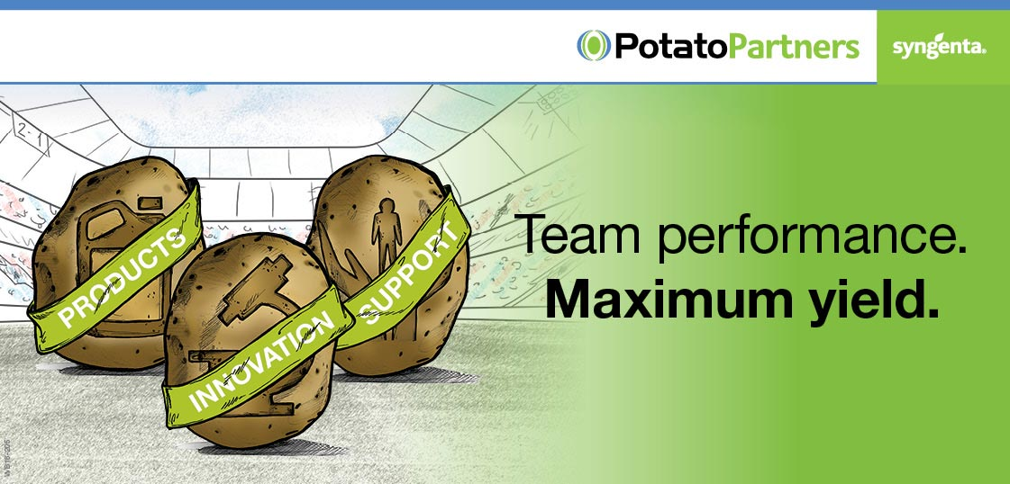 Potato Partners - Team performance. Maximum yield.