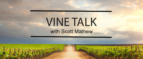 Vine Talk with Scott Mathew
