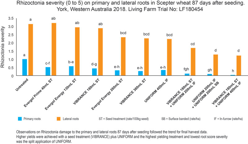 Syngenta and Living Farm conducted a trial comparing rhizoctonia controls in York, WA, in 2018.