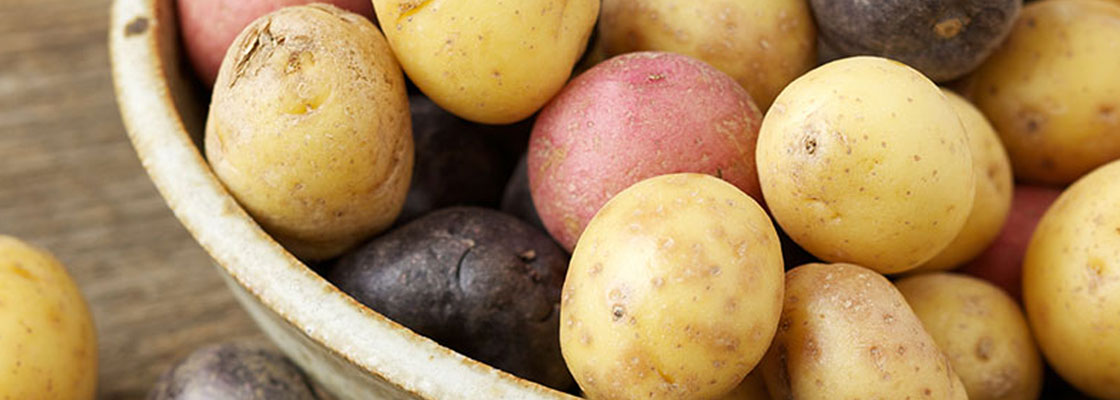 Potatoes banner