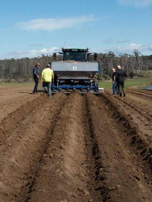Periodic checks of how the in-furrow application of Amistar is being applied is recommended.