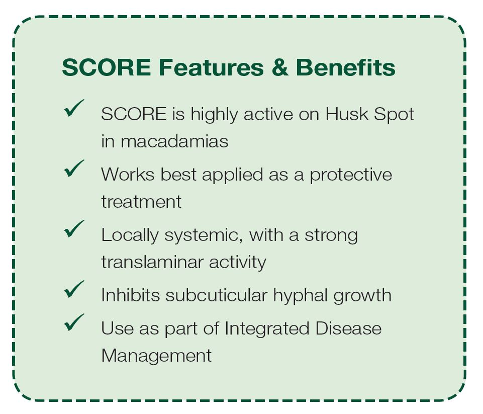 SCORE Features & Benefits