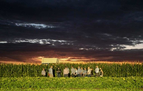 Syngenta GrowMore Experience Gatton Queensland