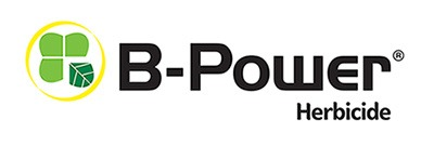B-Power logo