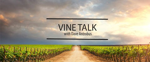 Vine Talk with Dave Antrobus