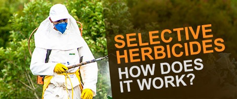 Man spraying - Selective Herbicides