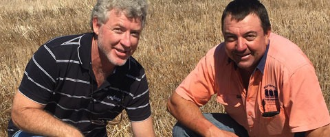 Stan Noonan, Syngenta Sales Representative based out of Dubbo with grower, Gary Weston at his property at Curban, NSW.