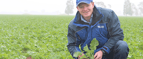 Pacific Seeds has closely observed the benefits of SALTRO DUO® in Syngenta trials, with superior control of seedling blackleg in canola.