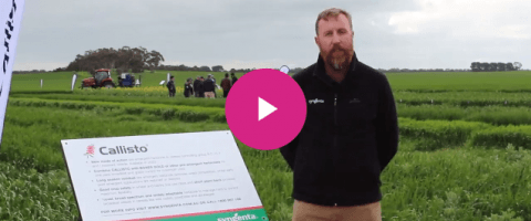 Syngenta Product Lead Garth Wickson introduces the pre-emergent herbicide CALLISTO