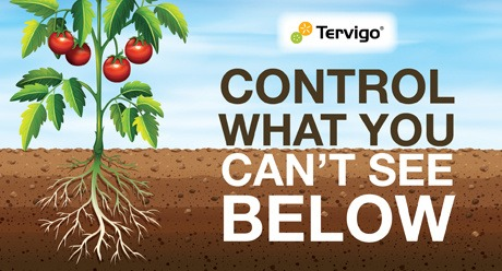 Tervigo - control what you can't see below