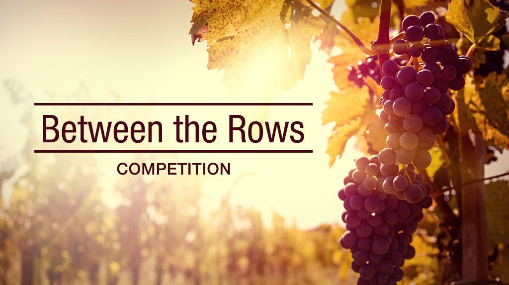Between the rows banner