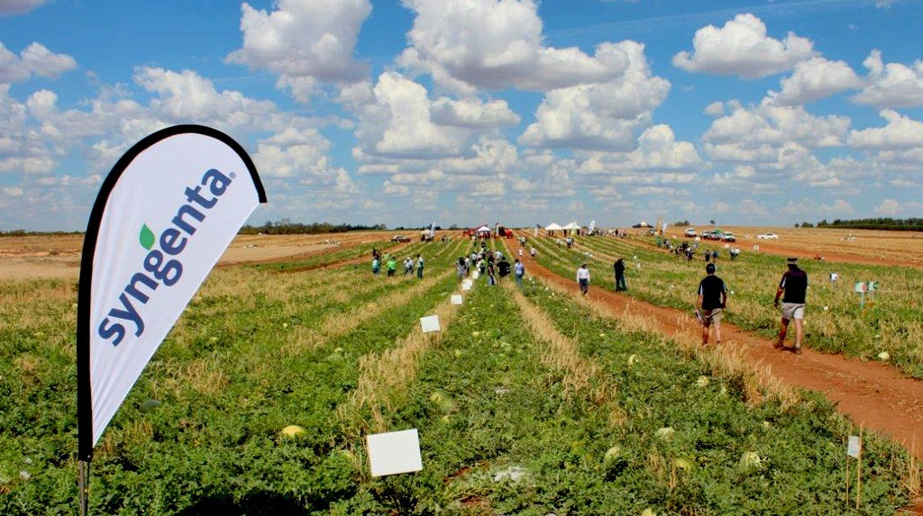 2016 Australian Industry Melon Conference & Field Day