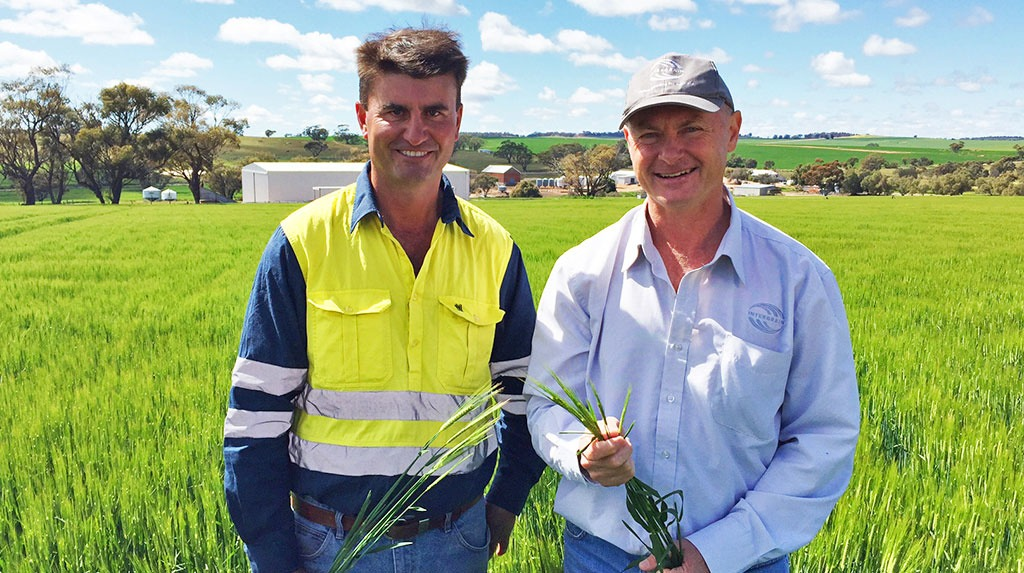 David Moody, InterGrain barley breeder, speaks with Duncan Young