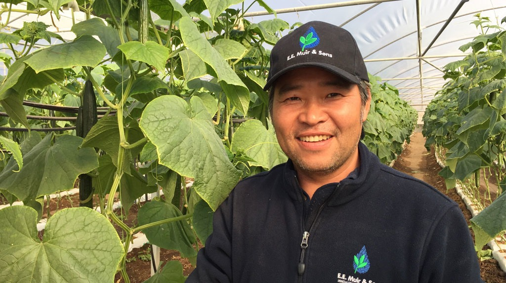 Recognised for his efforts in the 2016 Syngenta Growth Awards,Tommy Le has developed a niche tribal cucumber variety that is helping his local Vietnamese farming community thrive.