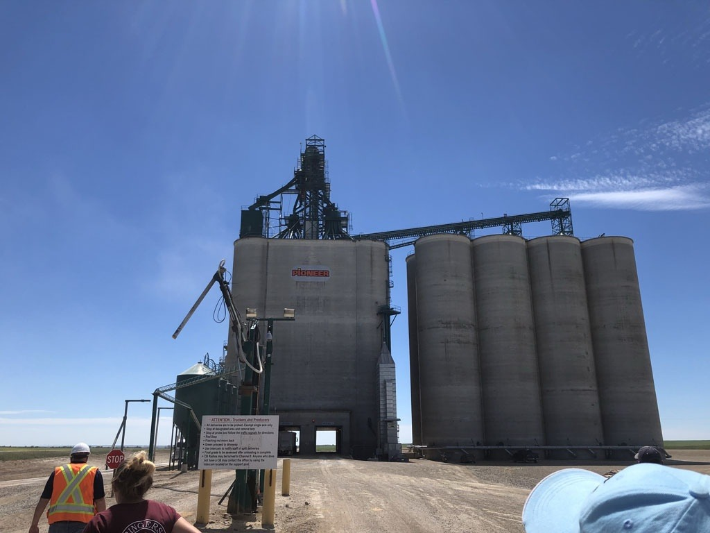 Grain Receival and Out-loading Facility Canada