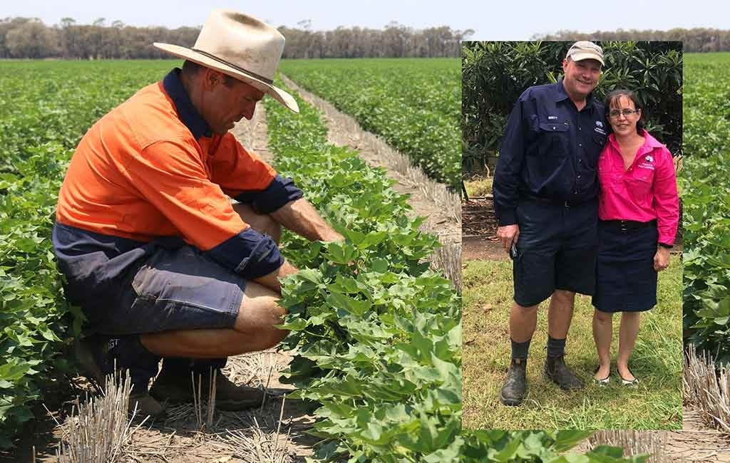 Syngenta and Cotton Seed Distributors announce winners of the FastStart Cotton Awards.