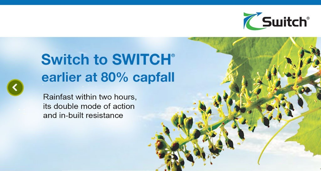 Switch to SWITCH® at 80% capfall