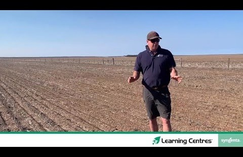 Learning Centres 2020 | Pulse herbicide trial
