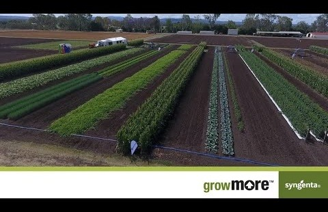 GrowMore Overview