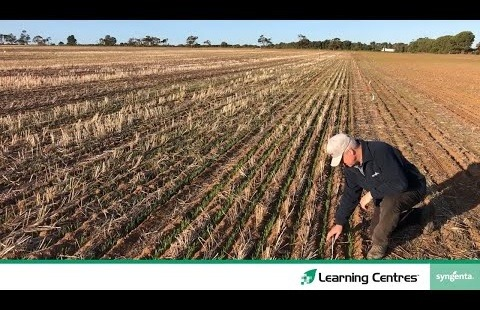 Learning Centres 2020 | Roseworth Episode One